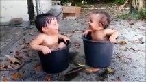 L'éclate totale : ces deux bébés s'éclatent dans un seau d'eau