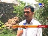 Porbandar Awas Yojana Houses Ready but waiting is on for inauguration - Tv9