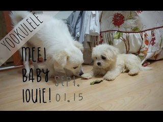 OMG LUKA GOT A BABY BROTHER :D