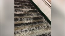 Cascade of Water Pours Down Steps Into Paris Metro Station