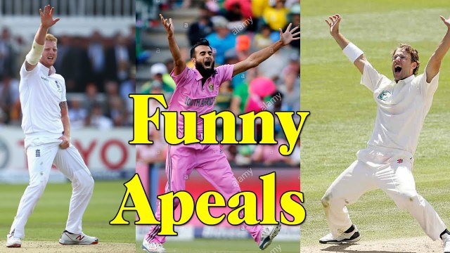 FUNNY HOWZAT Top 10 Funny Appeals in Cricket History Ever