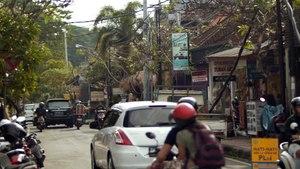 Monkey Mayhem in Bali