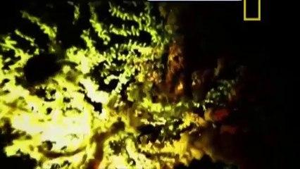 Abismo Submarino - Documentário - Dublado
