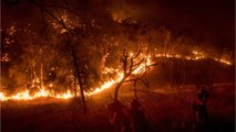 Thousands Of Firefighters Battling California Wildfires