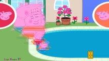 Et papa aller momie porc course course la natation avec Peppa george ☀ peppa