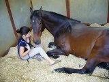 Girl and Horse -  Enjoy--Hd