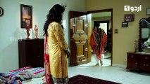 Be Inteha Episode 15 Urdu1