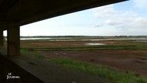 Deux observatoires d'oiseaux au Conservatoire du littoral