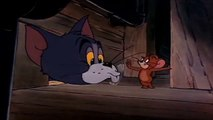 Tom Jerry Classic Collection Episodes Tom Jerry