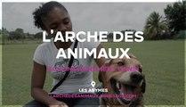 L'arche des animaux.  97139 ABYMES Dressage d'animaux
