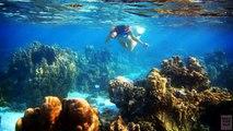 Dix des plages Mexique de de sommet Mexique plages