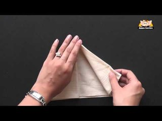 How to fold an Arrow Napkin in Marathi