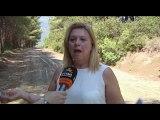 Εκτεταμένο δίκτυο καθαρισμού αντιπυρικών ζωνών από την Περιφερειακή ενότητα Βοιωτίας