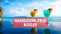 Alcosynth: Hangover-free booze coming to a bar near you by 2020?