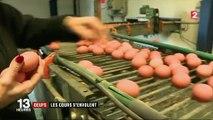 Scandale du fipronil : épargnés par l'insecticide, les œufs français voient leurs prix s'envoler