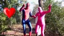 Pink Spidergirl Bride Wedding Dress Spiderman Pink Spidergirl Bride in Real Life Amazing Supeheroes