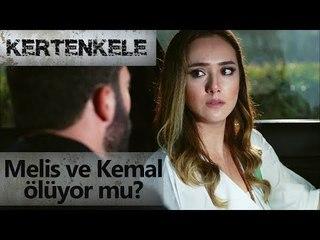 Melis ve Kemal ölüyor mu?