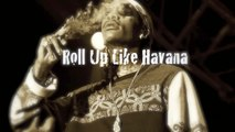 [FREE] Wiz Khalifa ft. Travis Scott Type Beat 2017 | Stoner Anthem - ROLL UP LIKE HAVANA