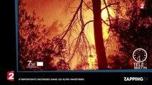 Alpes-Maritimes et Corse : D'importants incendies ravagent plusieurs hectares (vidéo)