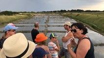 Visite des marais salants de Lasné