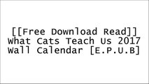 [LqxVE.F.R.E.E R.E.A.D D.O.W.N.L.O.A.D] What Cats Teach Us 2017 Wall Calendar by Willow Creek PressWorkman PublishingWillow Creek PressWillow Creek Press DOC
