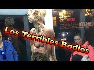 Los Terribles Bodies