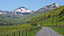 Cantal : au marché de la diversité