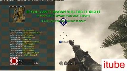 COD WAW Multiplayer Mod Menu Pestilence Modding v2 Download