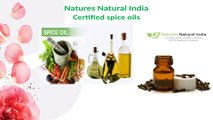 Natures Natural India Supplier of Wholesale Organic