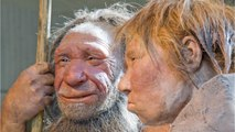 Turns Out Humans And Neanderthals Mated Long Before Previously Believed