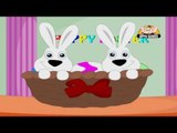 Nursery Rhyme - Bunnies Are Brown