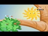 Classic Rhymes from Appu Series - Nursery Rhyme - Mr. Sun