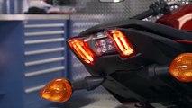 The Tech Savvy 2017 Yamaha FZ 09   Serial No. 000001