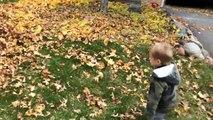 Il balance son fils dans le tas de feuilles mais ne s'attendait pas à ça(1)