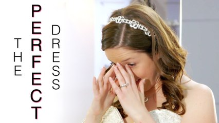The Reluctant Princess - The Perfect Dress