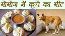 Delhi : Momos shops shuts after complaints of using dogs mutton | वनइंडिया हिन्दी