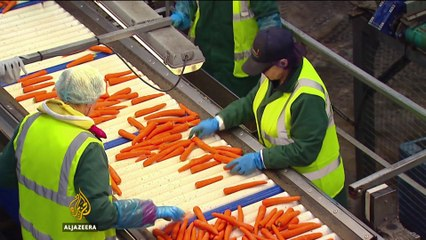 Brexit: A threat to Britain's food security? - Counting the Cost