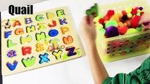 Les meilleures vidéos en bois Alphabet alphabet de casse-tête youtube