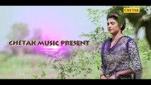 NEW HARYANVI SUPERHIT DJ SONG    Pani Aali [RE-MIX] - video