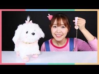 當寵物美容師的凱利! | 凱利和玩具朋友們 | 凱利TV