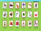 Enfants pour Cartes Doman éducation bébés cartes