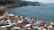 Zonguldak'ın Mavi Bayraklı Plajı Kapuz, Akdeniz Sahillerini Aratmadı