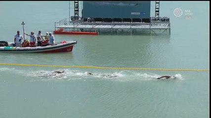 Arrivée d'Axel Reymond aux 25 km eau-libre des championnats du monde 2017