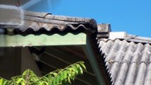 Clear Asbestos Roof Removal Melbourne