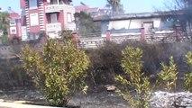 Villa Tipi Evlerin Bulunduğu Tatil Bölgesinde Sazlık Yangını