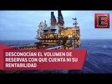 Pemex buscará alianzas con empresas privadas para explotar yacimiento en Yucatán