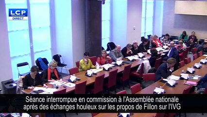 Une commission suspendue à l'Assemblée après un débat houleux sur l'IVG