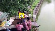 Chine : un âne jeté en pâture à des tigres dans un zoo