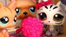 Transporter animal de compagnie école séries requins Boutique vidéos Lps collection tour les plus petites mamans cookieswirl