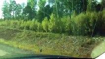 Nuevo video Toyota Tundra 1794 probar un Toyota Tundra camioneta 1794 coches tuning de